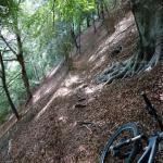 Anello rifugio Buzzoni da Barzio(Mountain bike)